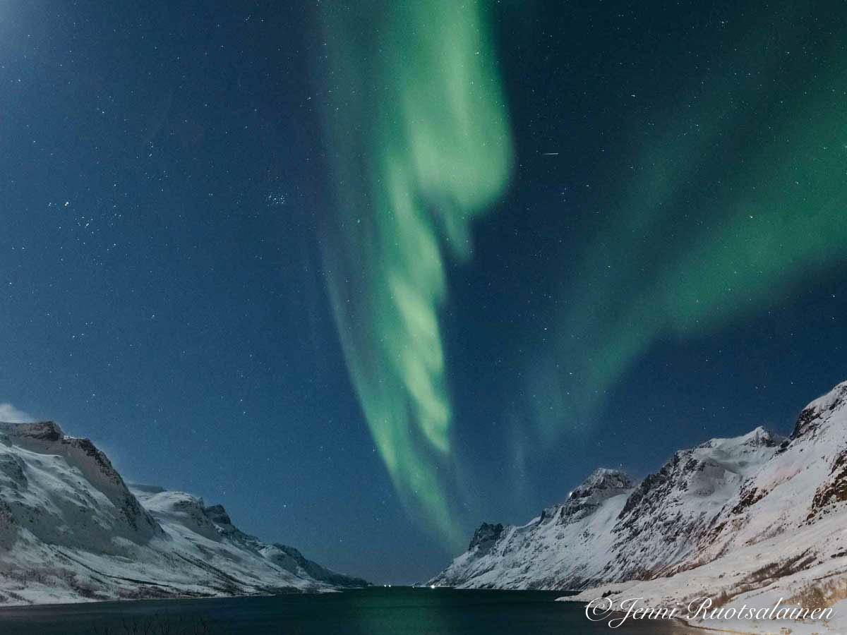 Upeat revontulet Norjan vuoristossa helmikuussa